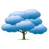 cloudtree_100